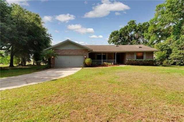 13019 Sydney Road, Dover, FL 33527 (MLS #T3172838) :: Team Bohannon Keller Williams, Tampa Properties