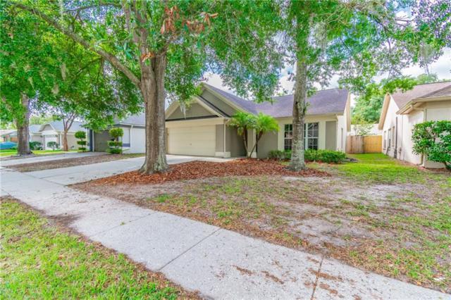1011 Hardwood Drive, Valrico, FL 33596 (MLS #T3172843) :: Jeff Borham & Associates at Keller Williams Realty