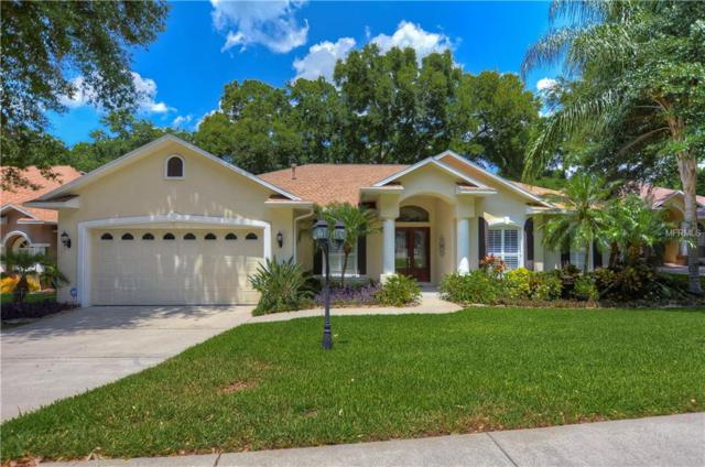 2326 Valrico Forest Drive, Valrico, FL 33594 (MLS #T3172923) :: Medway Realty