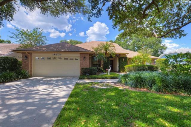 16605 Windsor Park Drive, Lutz, FL 33549 (MLS #T3172949) :: Cartwright Realty