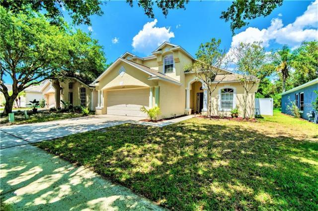 609 Somerstone Drive, Valrico, FL 33594 (MLS #T3173120) :: Team Suzy Kolaz