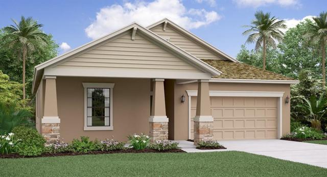 11466 Freshwater Ridge Drive, Riverview, FL 33579 (MLS #T3173202) :: The Duncan Duo Team