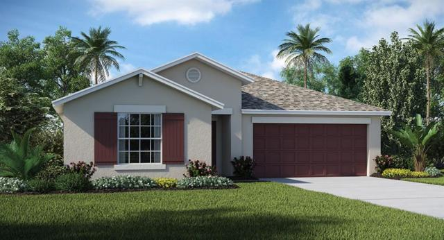 7313 Tiger Trail Court, Ruskin, FL 33570 (MLS #T3173241) :: Medway Realty