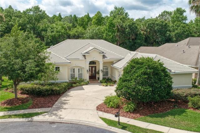 16366 Heathrow Drive, Tampa, FL 33647 (MLS #T3173242) :: Medway Realty