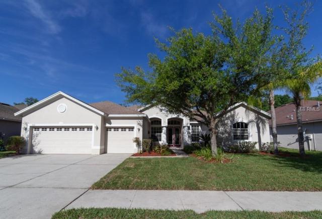 15502 Carrillon Estates Boulevard, Tampa, FL 33625 (MLS #T3173307) :: The Duncan Duo Team