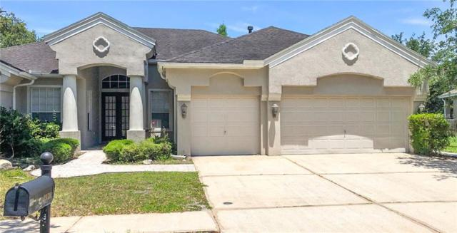 19310 Autumn Woods Avenue, Tampa, FL 33647 (MLS #T3173317) :: Team Bohannon Keller Williams, Tampa Properties