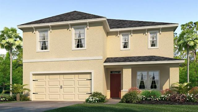 11915 Myrtle Rock Drive, Riverview, FL 33578 (MLS #T3173341) :: Team Bohannon Keller Williams, Tampa Properties
