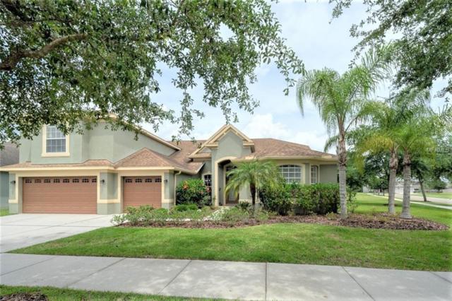 19124 Sweet Clover Lane, Tampa, FL 33647 (MLS #T3173347) :: Medway Realty
