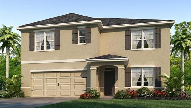 11916 Myrtle Rock Drive, Riverview, FL 33578 (MLS #T3173348) :: Team Bohannon Keller Williams, Tampa Properties