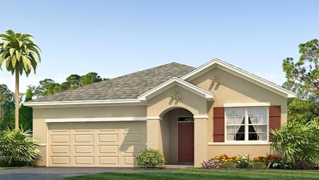 2862 Storybrooke Preserve Drive, Odessa, FL 33556 (MLS #T3173485) :: Team Bohannon Keller Williams, Tampa Properties