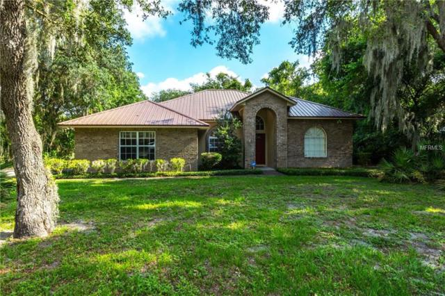 12404 Wexford Hills Road, Riverview, FL 33569 (MLS #T3173545) :: The Duncan Duo Team