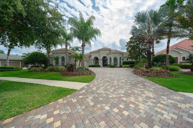12012 Royce Waterford Circle, Tampa, FL 33626 (MLS #T3173578) :: Andrew Cherry & Company