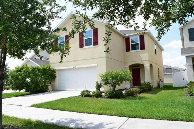 12230 Fawn Brindle Street, Riverview, FL 33578 (MLS #T3173589) :: The Duncan Duo Team