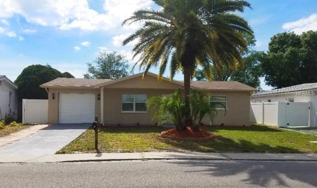 9531 Marlinton Lane, Port Richey, FL 34668 (MLS #T3173622) :: The Duncan Duo Team