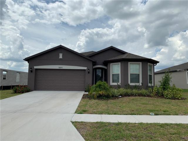 18891 Malinche Loop, Spring Hill, FL 34610 (MLS #T3173623) :: The Duncan Duo Team