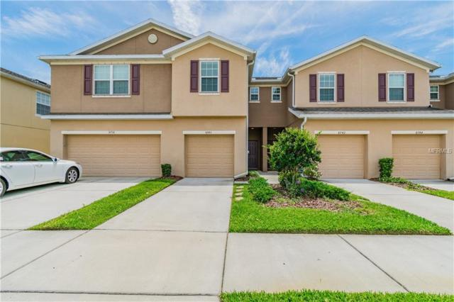 8740 Turnstone Haven Place, Tampa, FL 33619 (MLS #T3173712) :: Lovitch Realty Group, LLC