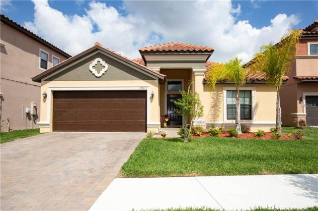12015 Cardinal Flower Drive, Riverview, FL 33579 (MLS #T3173716) :: Team Bohannon Keller Williams, Tampa Properties
