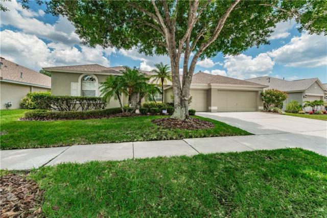 10233 Millport Drive, Tampa, FL 33626 (MLS #T3173727) :: The Duncan Duo Team