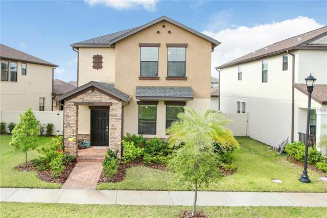 28456 Pleasant Bay Loop, Wesley Chapel, FL 33543 (MLS #T3173774) :: Team Bohannon Keller Williams, Tampa Properties