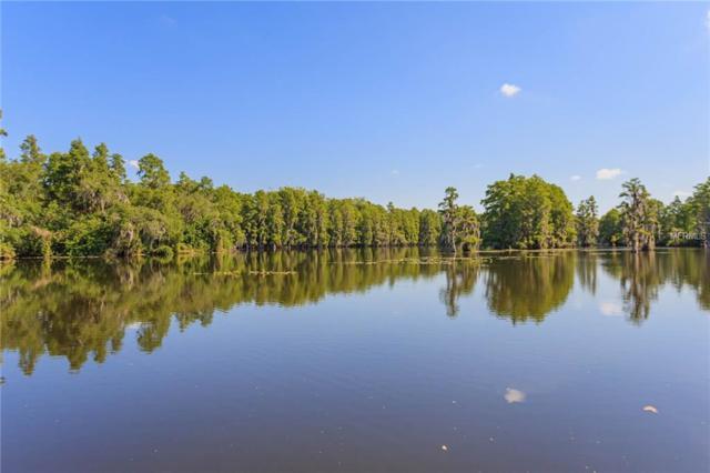 6080 River Trace Road, Tampa, FL 33617 (MLS #T3173778) :: Ideal Florida Real Estate