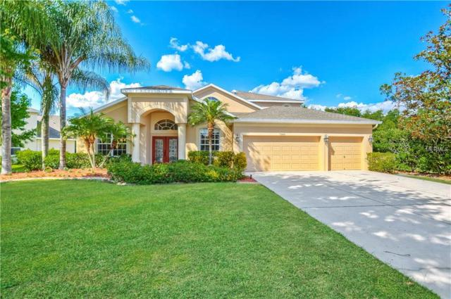 7300 Night Heron Drive, Land O Lakes, FL 34637 (MLS #T3173823) :: Lovitch Realty Group, LLC