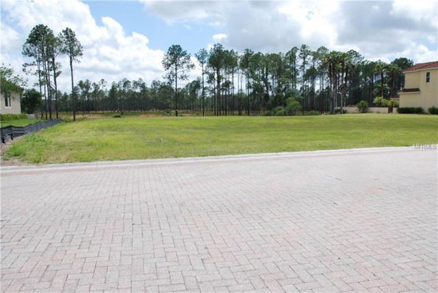 10552 Cory Lake Drive, Tampa, FL 33647 (MLS #T3173840) :: The Duncan Duo Team