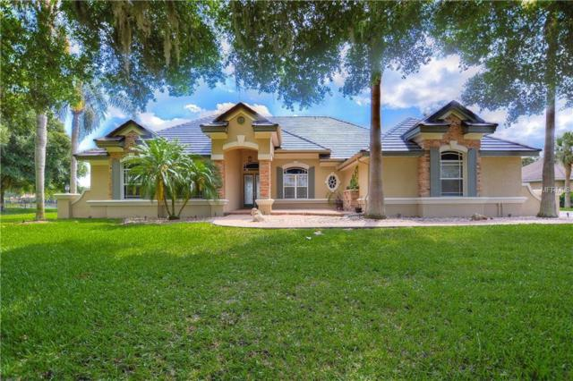 18127 Patterson Road, Odessa, FL 33556 (MLS #T3173845) :: The Duncan Duo Team