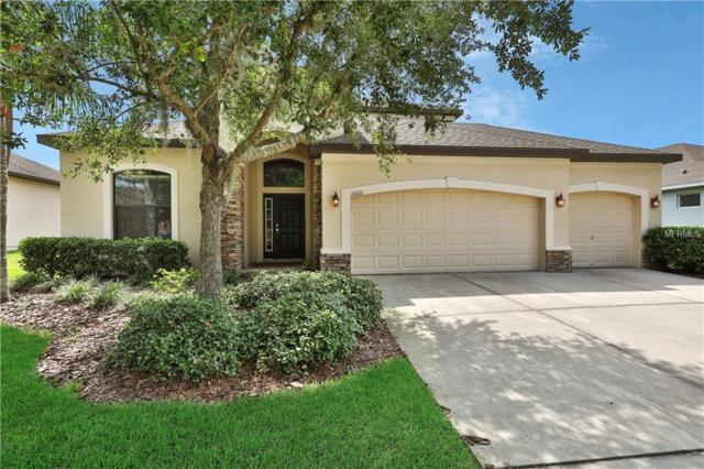 11011 Wembley Landing Drive, Lithia, FL 33547 (MLS #T3173898) :: The Robertson Real Estate Group