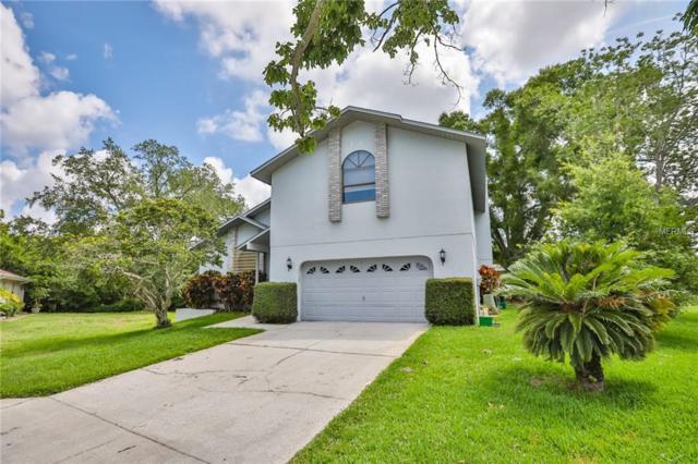 1123 Clarissa Court, Tarpon Springs, FL 34689 (MLS #T3173909) :: Team Bohannon Keller Williams, Tampa Properties