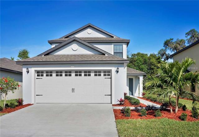 2223 Caspian Drive, Lakeland, FL 33805 (MLS #T3174000) :: Cartwright Realty