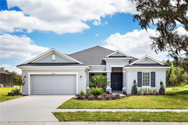 16745 Crossbill Court, Spring Hill, FL 34610 (MLS #T3174004) :: Lovitch Realty Group, LLC