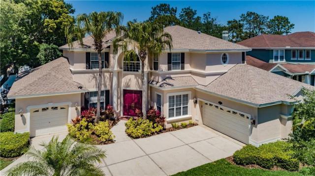 Address Not Published, Tampa, FL 33618 (MLS #T3174061) :: Delgado Home Team at Keller Williams