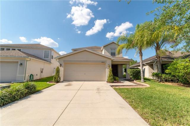 18023 Glastonbury Lane, Land O Lakes, FL 34638 (MLS #T3174099) :: RE/MAX Realtec Group