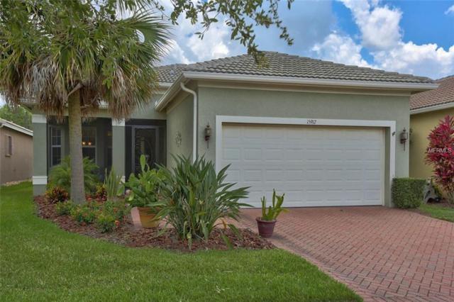 15917 Amber Falls Drive, Wimauma, FL 33598 (MLS #T3174227) :: Team Bohannon Keller Williams, Tampa Properties