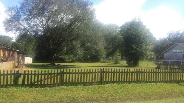 13013 Delwood Road, Tampa, FL 33624 (MLS #T3174249) :: The Duncan Duo Team