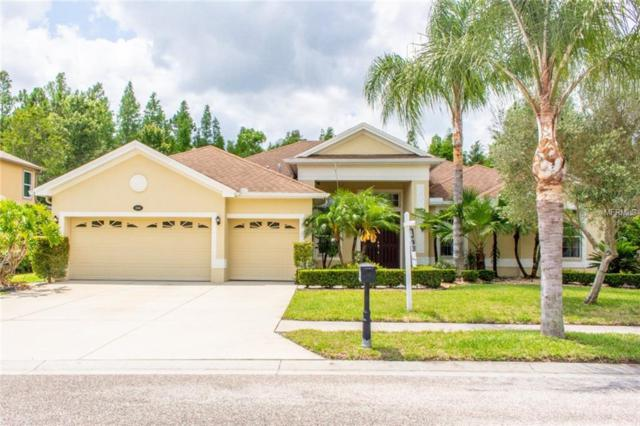 16048 Dakota Drive, Odessa, FL 33556 (MLS #T3174253) :: The Duncan Duo Team