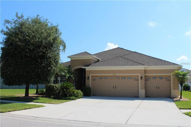 3242 Chessington Drive, Land O Lakes, FL 34638 (MLS #T3174304) :: The Duncan Duo Team