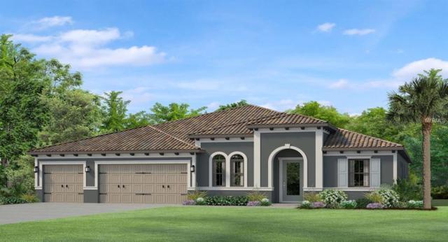 17913 Barn Close Drive, Lutz, FL 33559 (MLS #T3174334) :: The Brenda Wade Team
