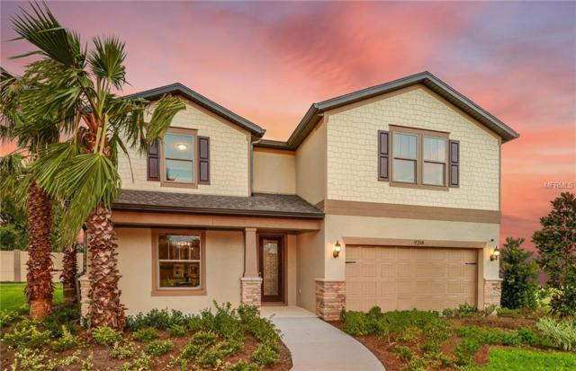9314 Blueberry Ash Circle, Riverview, FL 33578 (MLS #T3174349) :: Team Suzy Kolaz