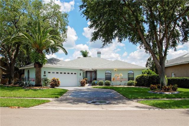 6613 Seabird Way, Apollo Beach, FL 33572 (MLS #T3174359) :: Lovitch Realty Group, LLC