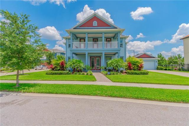 13920 Lake Fishhawk Drive, Lithia, FL 33547 (MLS #T3174369) :: The Robertson Real Estate Group