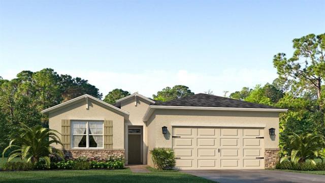 4035 Mossy Limb Court, Palmetto, FL 34221 (MLS #T3174375) :: Team Bohannon Keller Williams, Tampa Properties