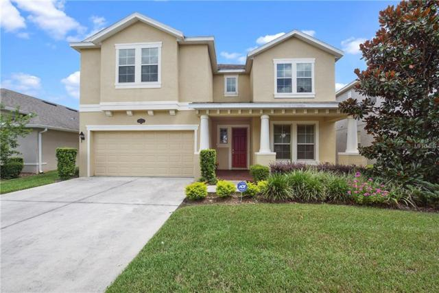 19231 Early Violet Drive, Tampa, FL 33647 (MLS #T3174385) :: Medway Realty