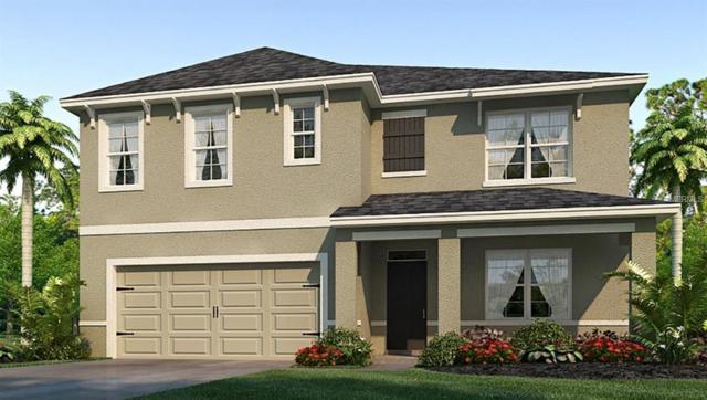 11906 Myrtle Rock Drive, Riverview, FL 33578 (MLS #T3174386) :: Team Bohannon Keller Williams, Tampa Properties