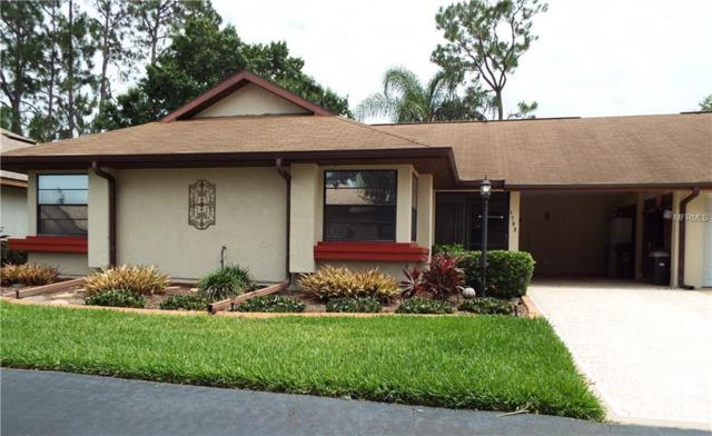 1703 Aura Court, Sun City Center, FL 33573 (MLS #T3174390) :: Griffin Group