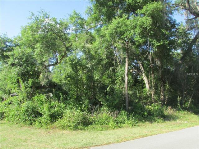 4744 S Rainbow Drive, Inverness, FL 34452 (MLS #T3174439) :: Pristine Properties