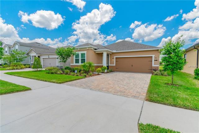 12371 Streambed Drive, Riverview, FL 33579 (MLS #T3174451) :: The Duncan Duo Team