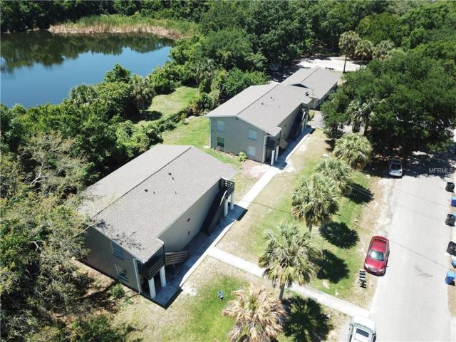 2205 Irene Street, Lutz, FL 33549 (MLS #T3174462) :: The Duncan Duo Team