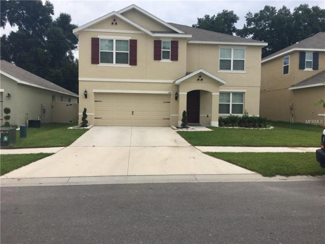 619 Diamond Ridge Road, Seffner, FL 33584 (MLS #T3174485) :: The Duncan Duo Team