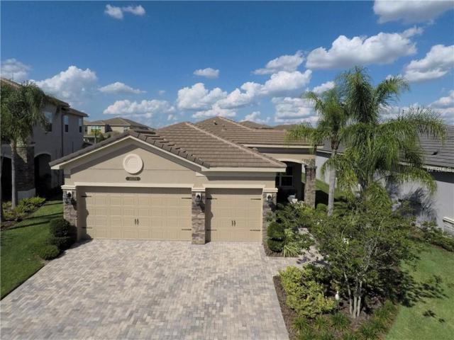 30279 Southernwood Court, Wesley Chapel, FL 33544 (MLS #T3174530) :: Team Bohannon Keller Williams, Tampa Properties
